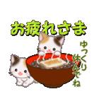三毛猫ツインズ 優しい冬(個別スタンプ:9)