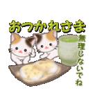 三毛猫ツインズ 優しい冬(個別スタンプ:11)