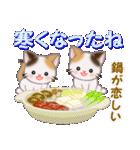 三毛猫ツインズ 優しい冬(個別スタンプ:17)