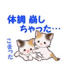 三毛猫ツインズ 優しい冬(個別スタンプ:23)