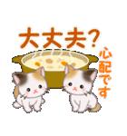 三毛猫ツインズ 優しい冬(個別スタンプ:25)