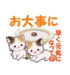 三毛猫ツインズ 優しい冬(個別スタンプ:27)