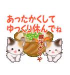 三毛猫ツインズ 優しい冬(個別スタンプ:30)