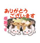 三毛猫ツインズ 優しい冬(個別スタンプ:31)