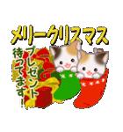 三毛猫ツインズ 優しい冬(個別スタンプ:35)