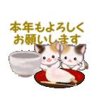 三毛猫ツインズ 優しい冬(個別スタンプ:39)