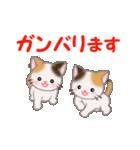 お返事かわいい 三毛猫ツインズ(個別スタンプ:34)