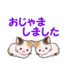 お返事かわいい 三毛猫ツインズ(個別スタンプ:40)