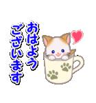 もふもふしっぽの子猫ちゃん 毎日使う言葉(個別スタンプ:1)