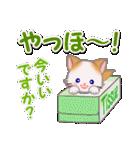 もふもふしっぽの子猫ちゃん 毎日使う言葉(個別スタンプ:5)