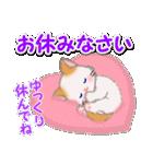 もふもふしっぽの子猫ちゃん 毎日使う言葉(個別スタンプ:6)