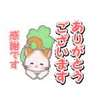 もふもふしっぽの子猫ちゃん 毎日使う言葉(個別スタンプ:11)