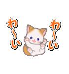 もふもふしっぽの子猫ちゃん 毎日使う言葉(個別スタンプ:24)