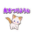 もふもふしっぽの子猫ちゃん 毎日使う言葉(個別スタンプ:36)