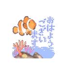 1000匹超え!!魚のメッセージ[動く3D](個別スタンプ:6)