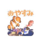 1000匹超え!!魚のメッセージ[動く3D](個別スタンプ:8)
