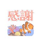 1000匹超え!!魚のメッセージ[動く3D](個別スタンプ:16)