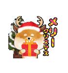 まる柴っちの年末年始Ⅱ(個別スタンプ:1)