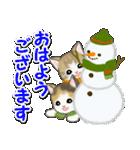 冬のもこもこ猫ちゃんズ(個別スタンプ:1)
