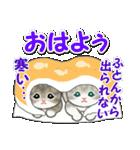 冬のもこもこ猫ちゃんズ(個別スタンプ:2)