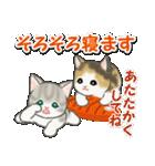 冬のもこもこ猫ちゃんズ(個別スタンプ:5)
