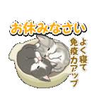 冬のもこもこ猫ちゃんズ(個別スタンプ:6)
