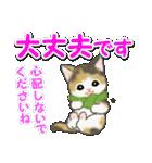 冬のもこもこ猫ちゃんズ(個別スタンプ:20)