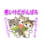 冬のもこもこ猫ちゃんズ(個別スタンプ:22)
