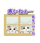 冬のもこもこ猫ちゃんズ(個別スタンプ:23)