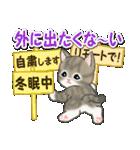 冬のもこもこ猫ちゃんズ(個別スタンプ:24)