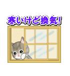冬のもこもこ猫ちゃんズ(個別スタンプ:27)