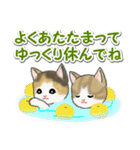 冬のもこもこ猫ちゃんズ(個別スタンプ:28)