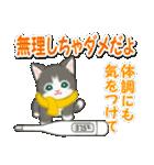 冬のもこもこ猫ちゃんズ(個別スタンプ:31)