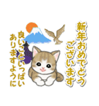冬のもこもこ猫ちゃんズ(個別スタンプ:39)