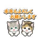 冬のもこもこ猫ちゃんズ(個別スタンプ:40)