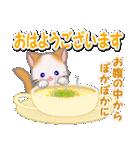 冬のもふもふしっぽの子猫ちゃん(個別スタンプ:1)