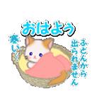 冬のもふもふしっぽの子猫ちゃん(個別スタンプ:2)