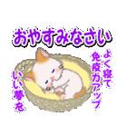 冬のもふもふしっぽの子猫ちゃん(個別スタンプ:6)