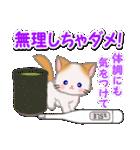 冬のもふもふしっぽの子猫ちゃん(個別スタンプ:31)