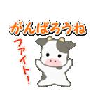 のほほん子牛 毎日&年末年始(個別スタンプ:25)