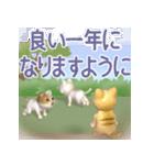 飛び出す 縁側の猫【お正月】(個別スタンプ:13)