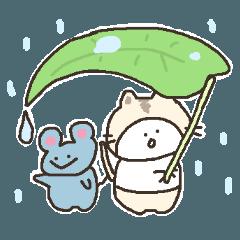 猫かぶりにゃんこ【夏】