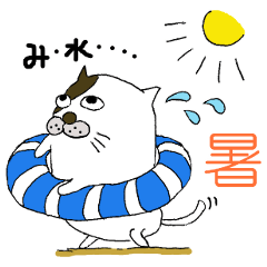 ねこ山さん 日常&夏