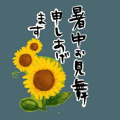 大人の丁寧なあいさつ 季節の植物・夏