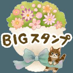 【BIG】基本&行事☆猫たちのスタンプ