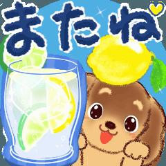 夏わんこ♡ 大文字