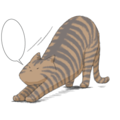 [LINEスタンプ] 全12種 話すねこのスタンプ/きじとら猫 (1)