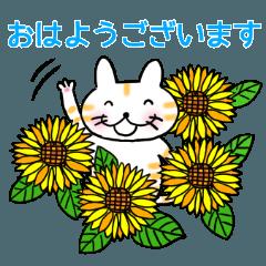 いぬ、ねこ、うさぎの仲良しトリオ【夏】