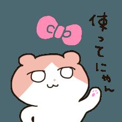 うちのにゃんこ3