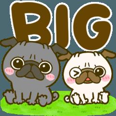 [LINEスタンプ] 黒パグちゃん♡BIGスタンプ